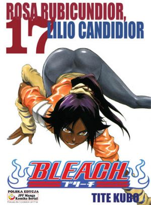 Bleach - tom 17 Tite Kubo